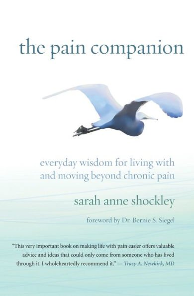 Retailing Insight Magazine Book Review The Pain Companion - Sarah Anne Schockley